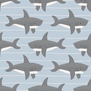 swimming sharks // air