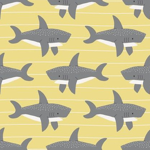swimming sharks // sunflower