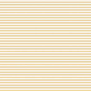 Sunlight horizontal stripe