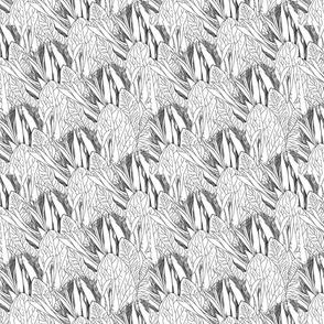 Protea Lines
