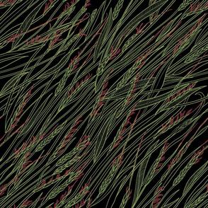 PILI GRASS