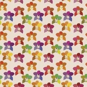 Orquid rainbow