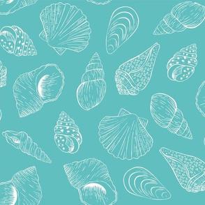 Outline seashells - turquoise