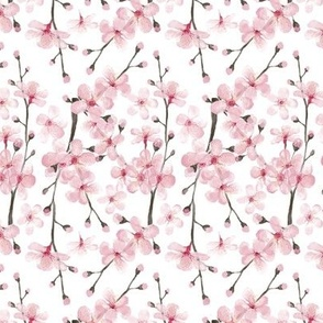pink watercolor cherry blossom rotated