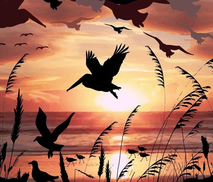Dune Grasses Sunset