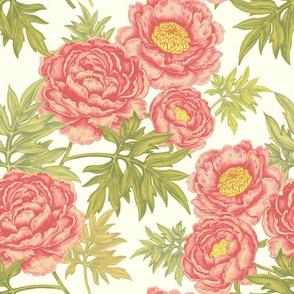 Garden Pink Peonies