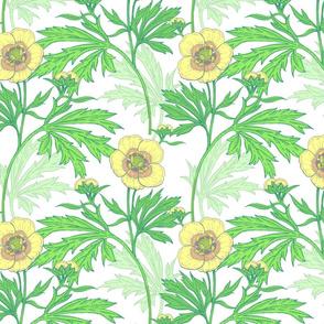 Yellow Country Wildflowers