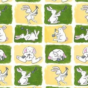 Rabbit Notes