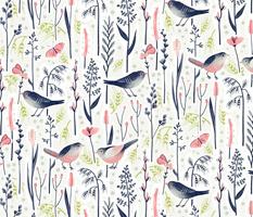 Bird Love in Grass