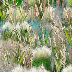 Wild Eco-friendly Native Grasses in Spring