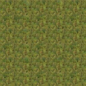 Grasslands Small Print
