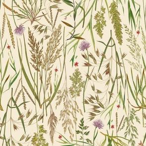 large wild grasses with clover on cream