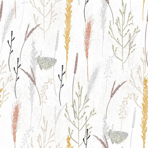 wild grasses and butterfly on white