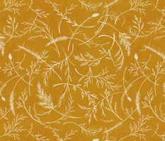 wild golden grass