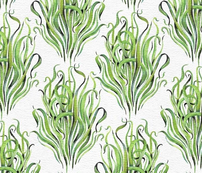 Dreamy Wild Grasses