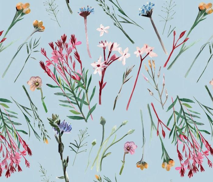 Victorian Native Grasses