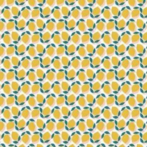 lemons // micro