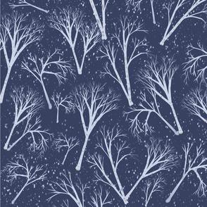 Winter_Birches.jpg