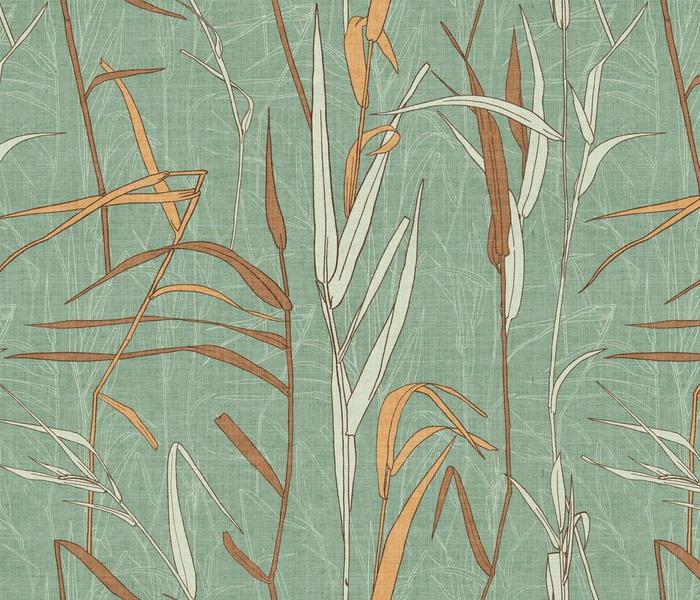 Late Summer Grasses
