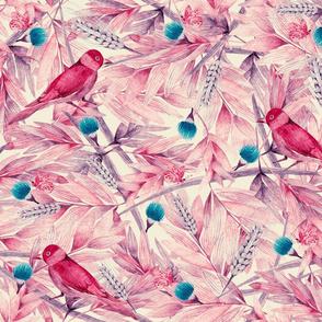 Wild Pinks