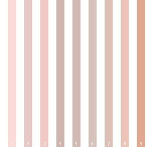 Dusty Pink Spectrum with numbers Palette TESTER swatchuette 2021