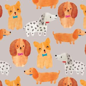 Fancy Puppies