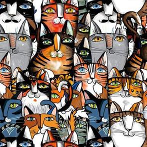 The feline  crowd
