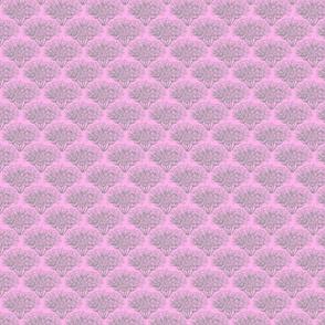 Jupiter's Beard flower, dusty pink and grey