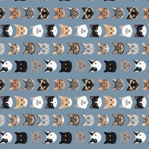 TINY - cat faces hello cats kitty cute faces cats fabric