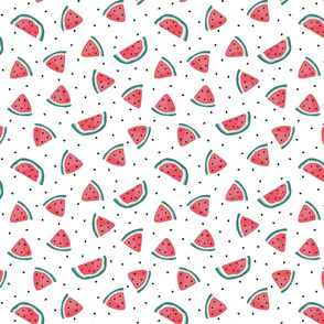 Watermelon and seeds - over white
