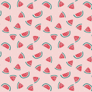 Watermelon  and white seeds - over pink