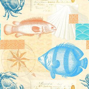 Fish and Seashells Vintage Coastal