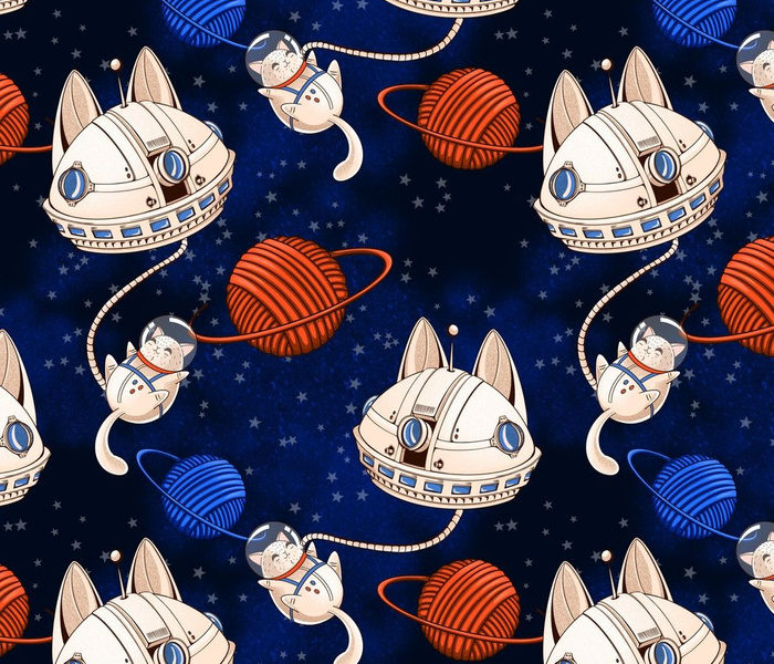 Astro Galaxy Cat