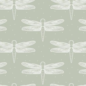 small Dragonflies in Muted Sage Green Dragonfly Insects with Detailed Wings