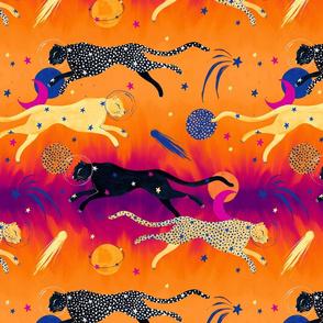 Galactic Gepard