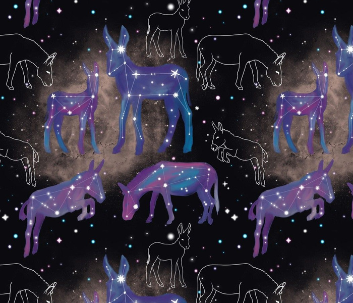 Donkey Constellations