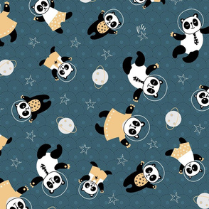 Pandas cosmic adventures