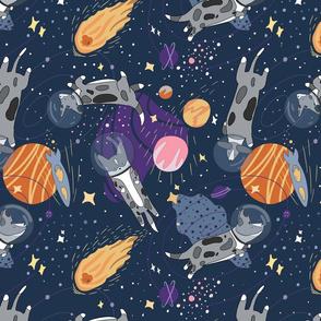 Blue Merle corgi in da space