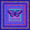 Purple_butterfly_if_nothing_changes_whole_image_on_test_swatch