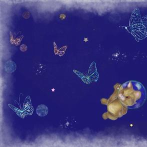 Intergalactic Kitten Dreams