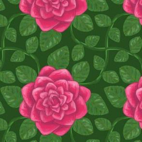 Everblooming Pink Rose on Green