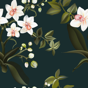 Tropical Orchid wallpaper