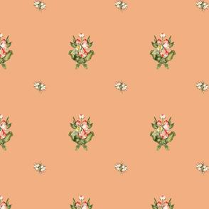 Hudson Emblem Peach