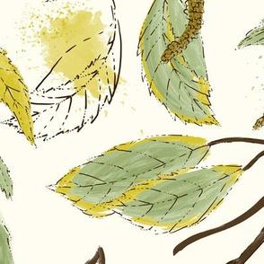 Birch In September