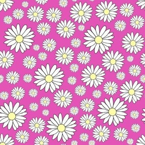 Daisy in Pluto pink