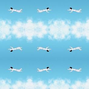 Flying Prince
