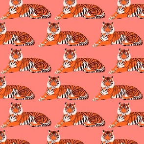 """Tigers on pink - 3"""""""