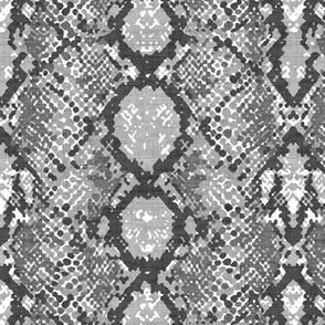 Snakeskin  - Gray Texture