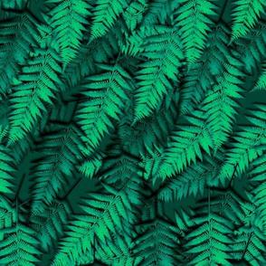 Moody Ferns
