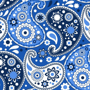 Blue and White Country Paisley Print